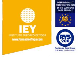 Logo IEY